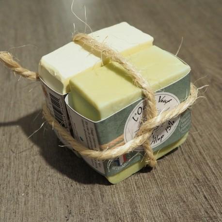 Pack 2 savons de 100g - Castille & Alep
