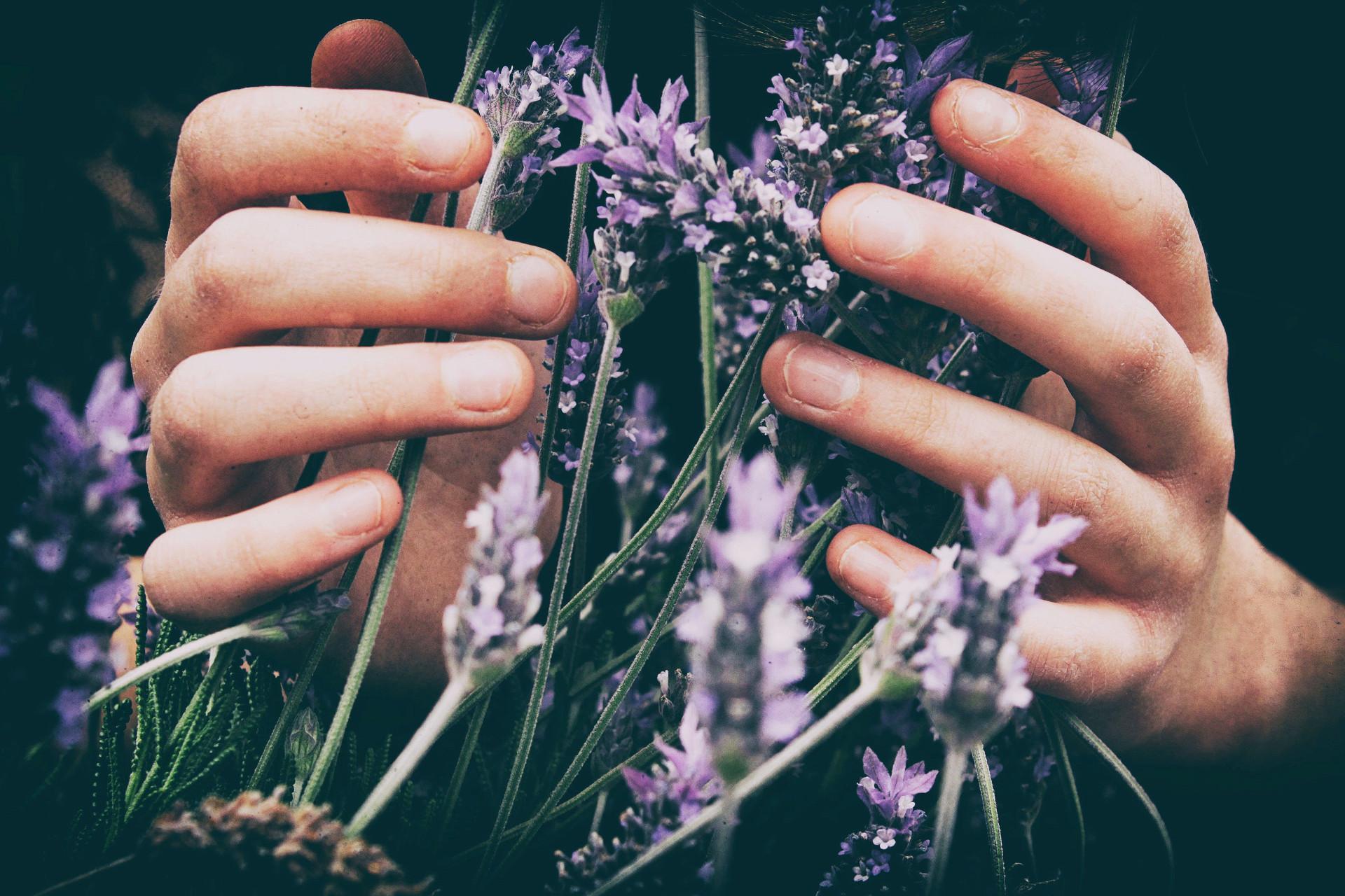 L'aromathérapie, photo de Vero Photoart