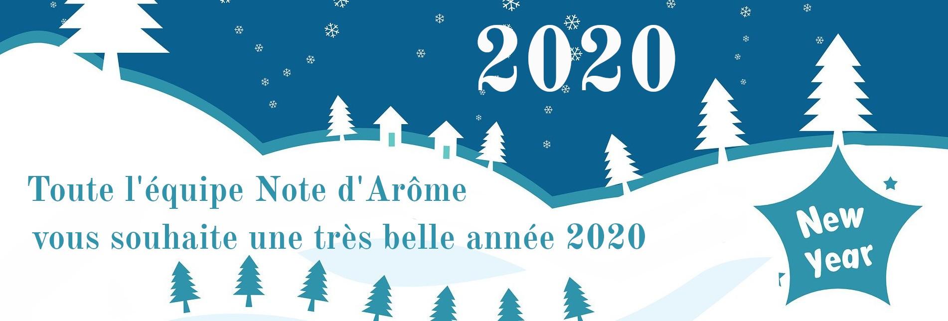 Voeux pour la nouvelle année 2020